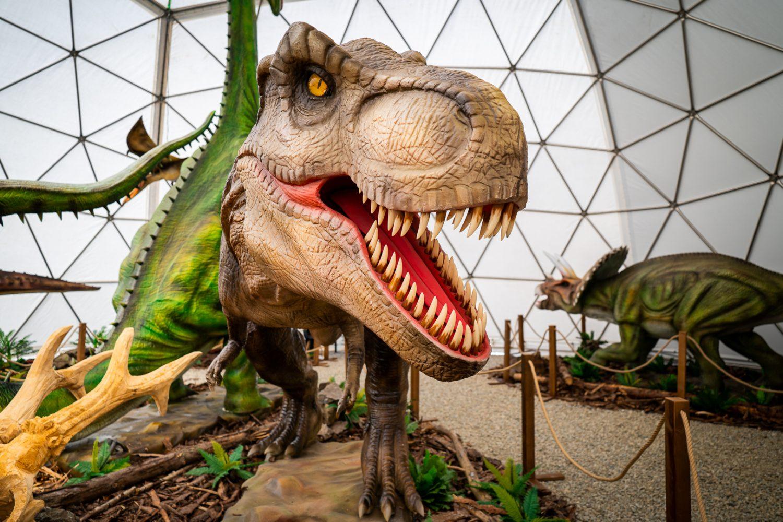 Dino Park Tatry